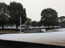 テクのリサーチパークの雪化粧.jpg
