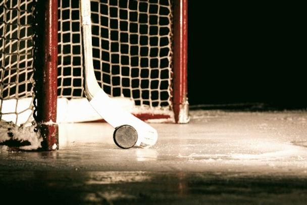 Hockey%20Puck%20%26%20Stick_edited.jpg