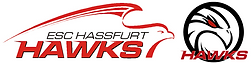 Webseite Logos ESC Hassfurt ohne Text.PN