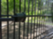 Gate Operator photo eye. Self closing automatic gate access system for security. Ornamental Steel fencing and gate.