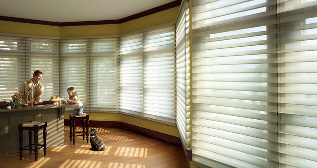 Mini Blinds Tucson Arizona The Blind Man Window Coverings