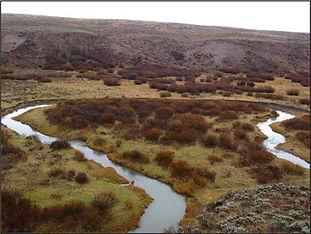 Tincup Creek.jpg