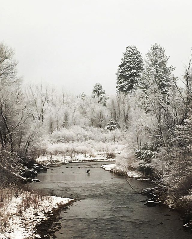 Winter has started in the White Mountains.jpg The scenery just went from beautiful to breathtaking