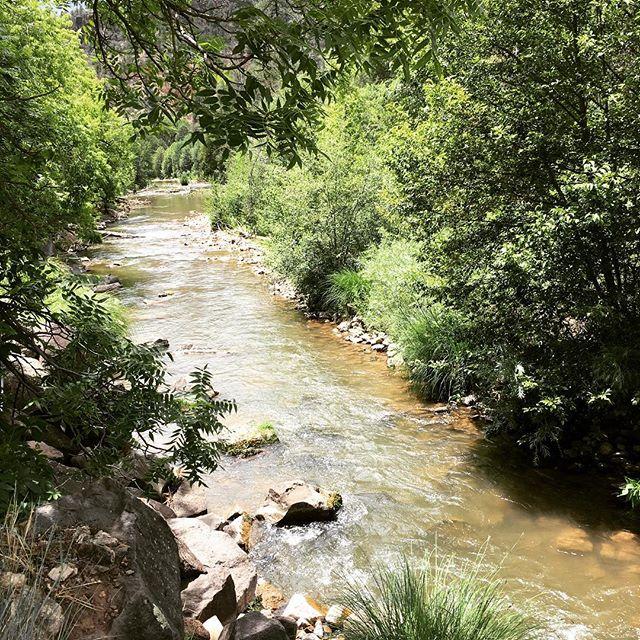 #arizonastreams #alchesay #whiteriver #arizona #whitemountains