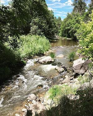 Whiteriver Williams Creek Photo Credit: S. Vail-Muse USFWS Biologist