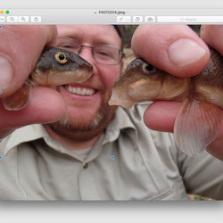 Fish Biologist and Project Coordinator Jeremy Voeltz shows us two native desert fish species the Des