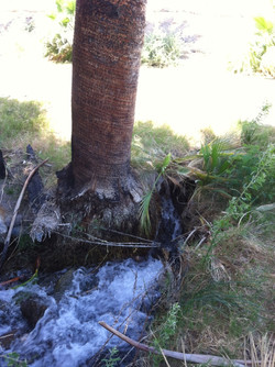 Apcar project_Downstream deteriorated, undersized, 18 inch corrugated metal pipe culvert with 11 per