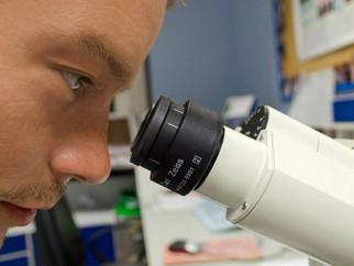 Cientistas descobrem novo tipo de demência confundida com Alzheimer