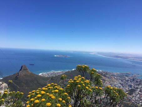 SOUTH AFRICA | Cape Peninsula & the Winelands