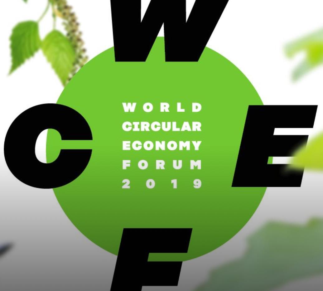 WCEF2019 Publications