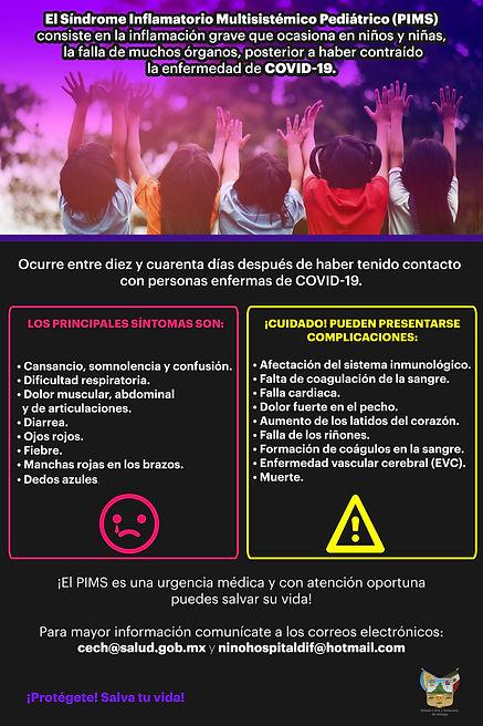 Información PIMS 1.jpg