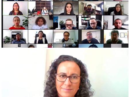 IEEH imparte plática virtual a representantes de medios de comunicación sobre la renovación