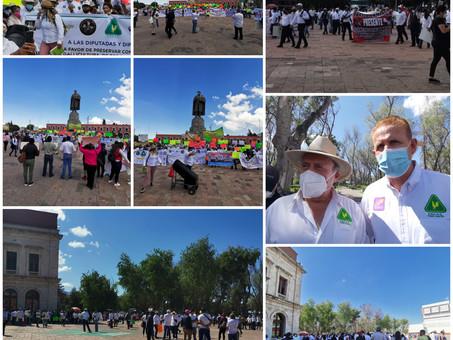 Galleros se manifiestan en la explanada de plaza Juárez