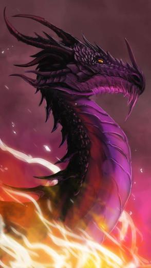Dragons de naissance - Dragons guides - Compagnons Dragons