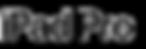 ipadpro-logo.png