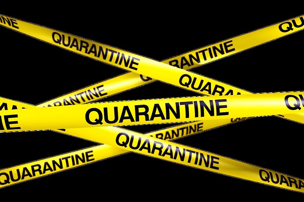 Quarantine-PNG-Free-Download.png