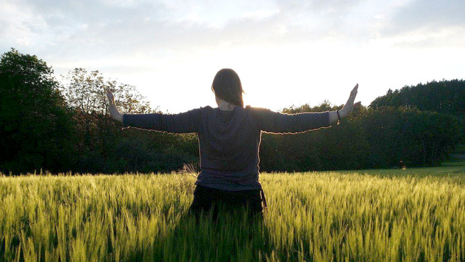 Il Qi Gong e le discipline integrate