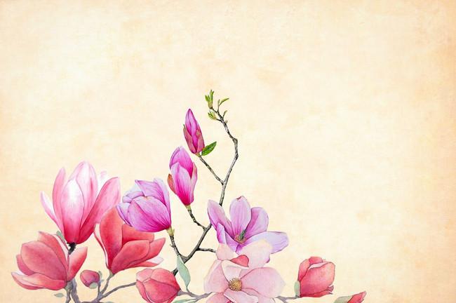 La Seconda Primavera una nuova vita per la Donna