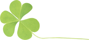 shamrock%204_edited.png