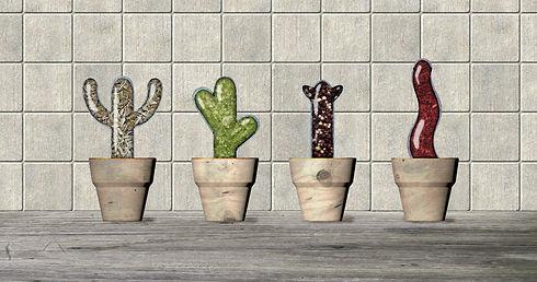 Spice cactus