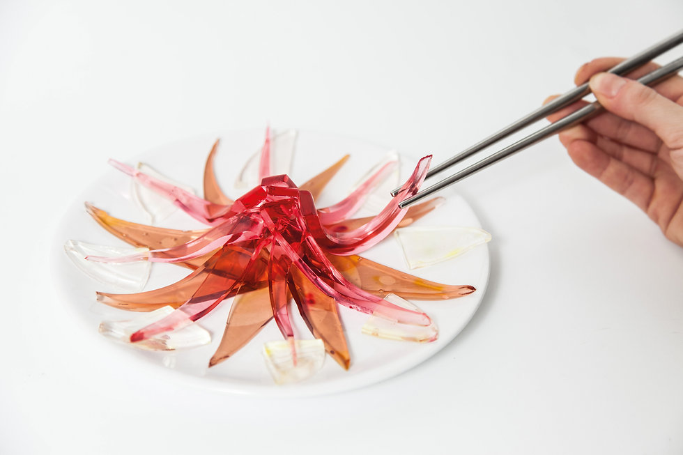BIV_see-through-sushi.jpg