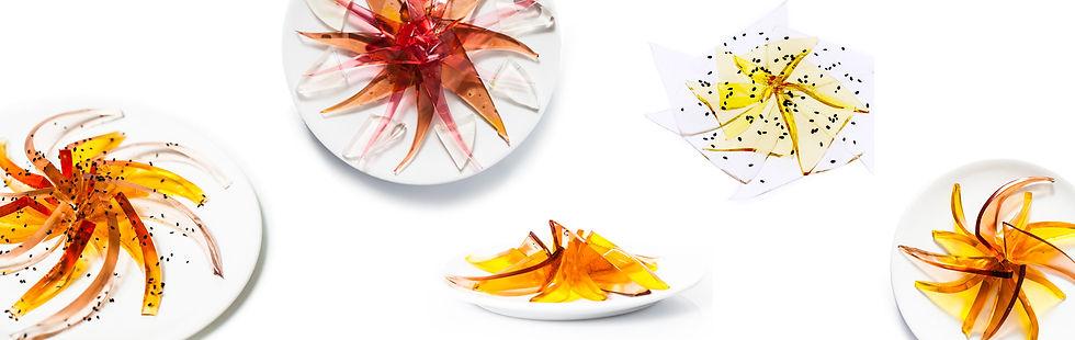 BIV_sashimi-compositions2.jpg