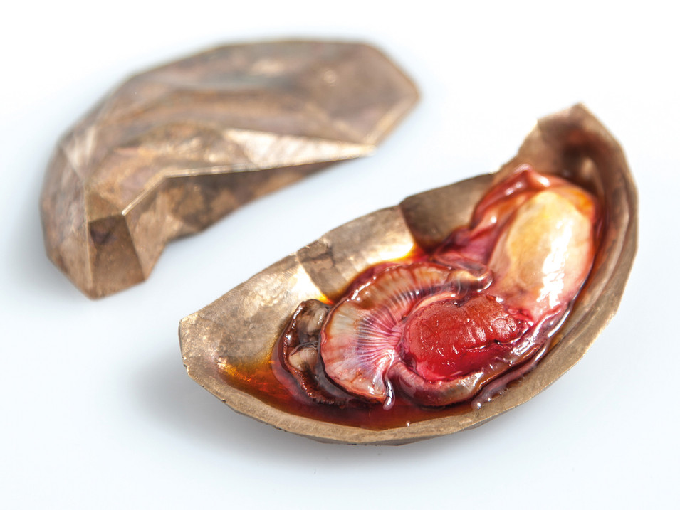 In Vitro Oysters