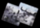 card-pair_free.png
