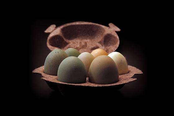 Honest-Eggs.png