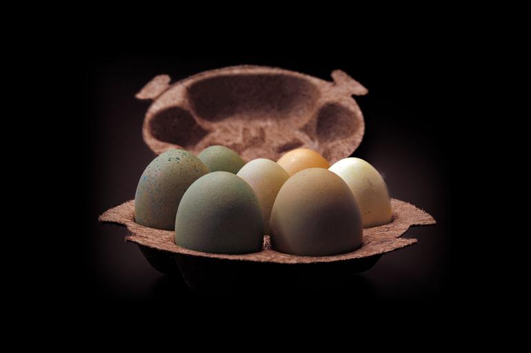 Honest Egg