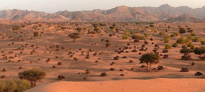 Desert 3987751 1920 - Oman.jpg