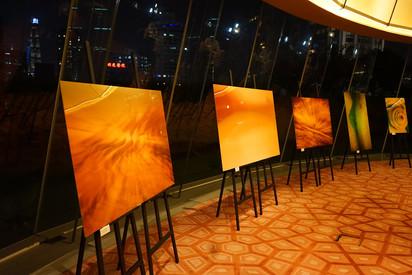 2017 Shanghai Sunrise Annual Fundraiser (15).jpg