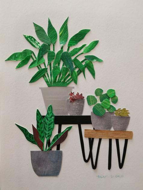 Paper collage plants_Nienke Vletter.jpg