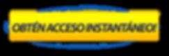 BOTON ACCESO.png