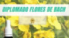 DIPLO FLORES.png