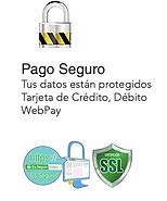 AA PÂGO SEGURO.png