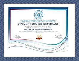 DIPLOMA UNIVERSIDAD INT.png