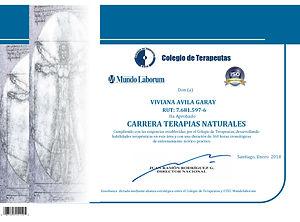 Diploma-Carrera-jpg.jpg