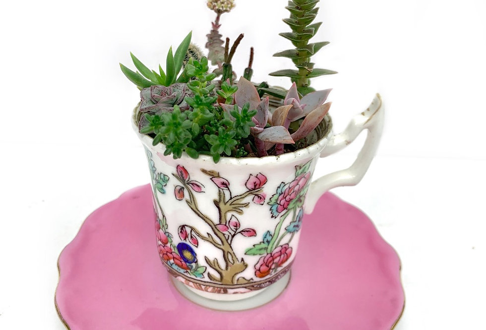 Gorgeous small cup with vivid pink saucer
