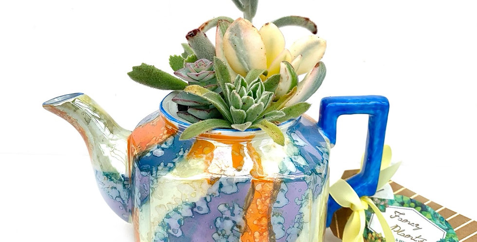 A stunning glazed small teapot filled with colourful succulents