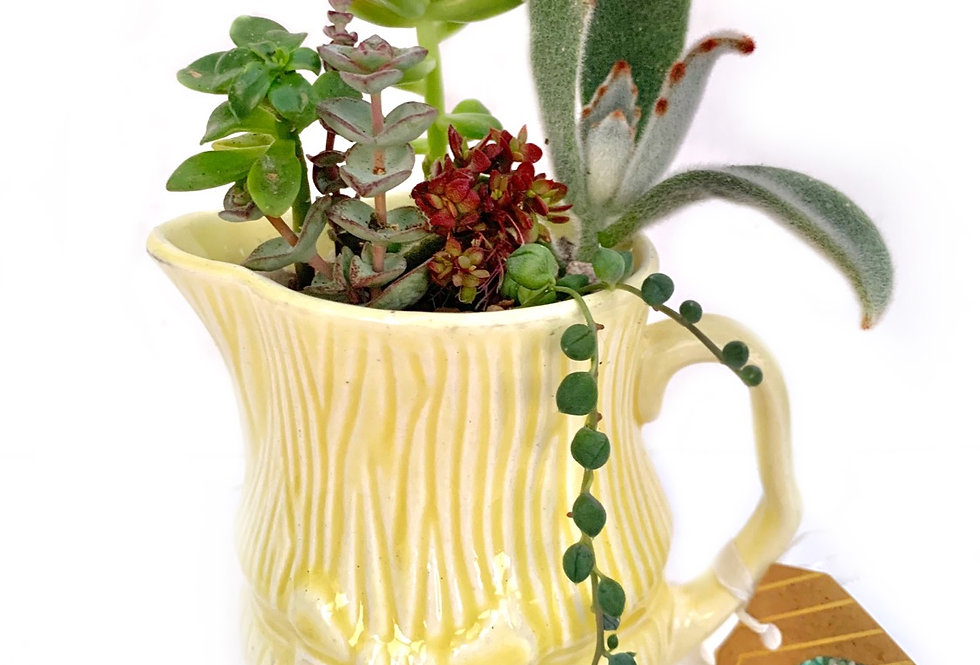 Large Vintage lemon yellow 'Sylvac' jug with bow design.