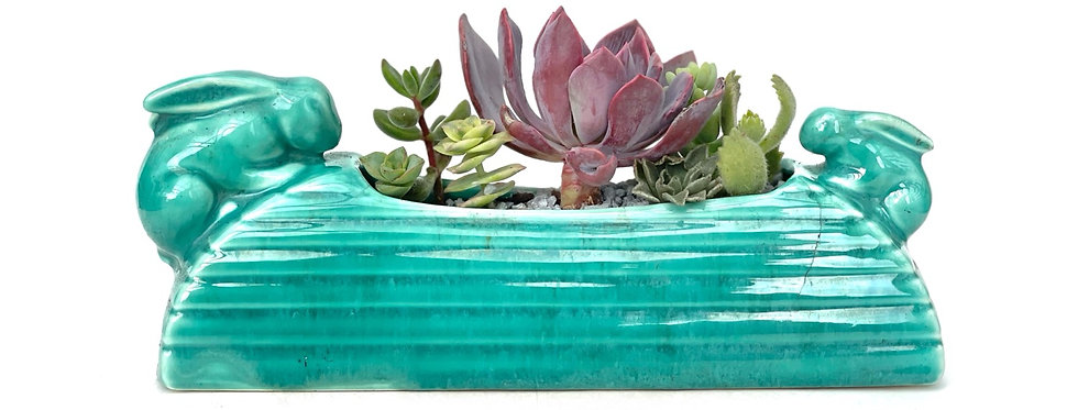 A stunning vintage teal coloured bunny vase filled with colourful succulents