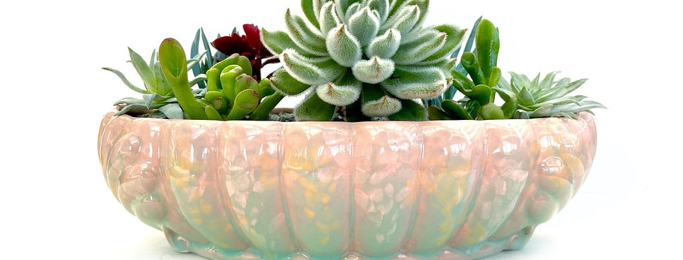 A stunning vintage trough vase filled with colourful succulents