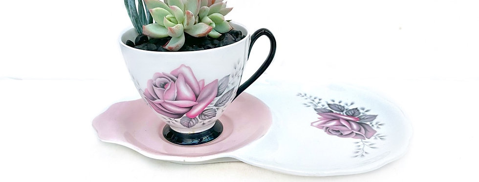 A pretty pink & white teacup set filled with colourful succulents