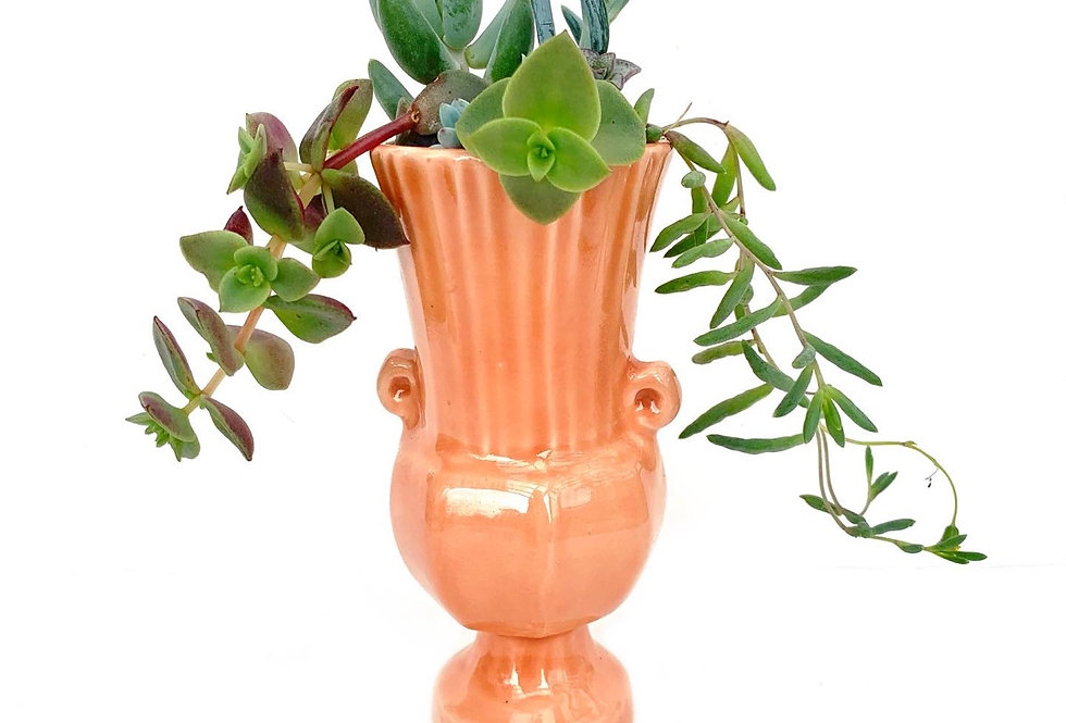 Greek style vase filled with colourful succulents