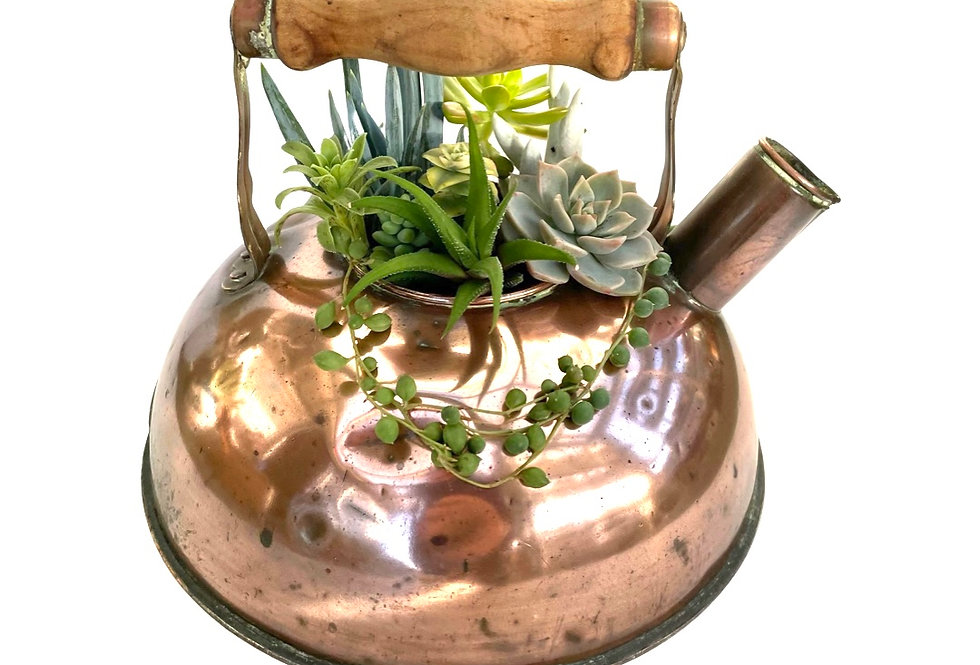 A gorgeous old copper kettle filled with a variety of succulents