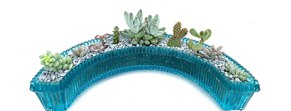 A stunning vintage blue glass posy filled with colourful succulents
