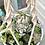 Thumbnail: Orange enamel bowl filled with colourful succulents & macrame hanger