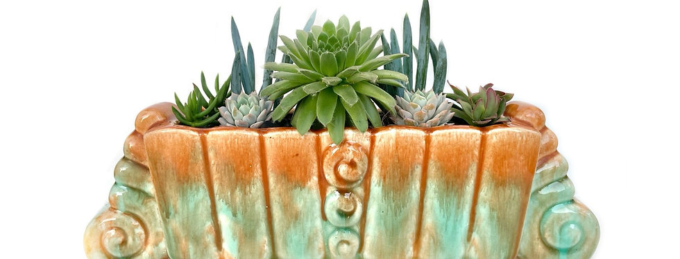 A stunning vintage Art Deco Diana vase filled with a variety of succulents