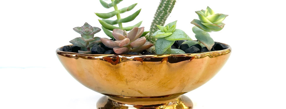 A very small bronze effect vase filled with colourful succulents
